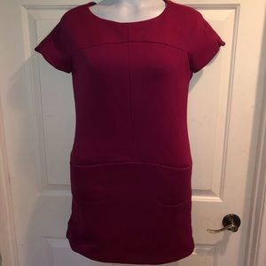 Zara Collection Fuchsia Dress Med THICK:43